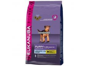 Eukanuba Puppy and Junior Large Breed Hmotnost  15kg